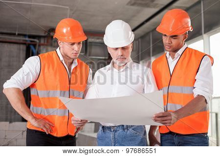 Skilled builders are planning to build new construction