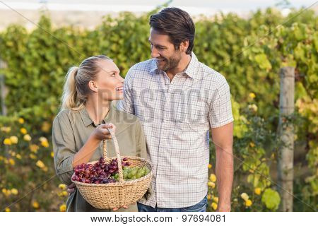 Two young happy vintners holding a basket of grapes in the grape fields