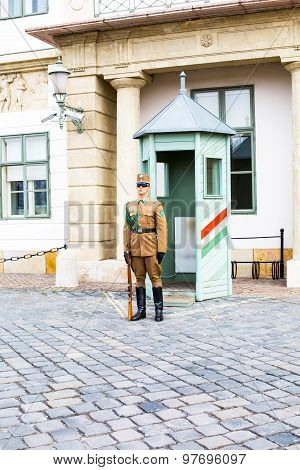 Guard Near The Presidential Palace In Budapest, Hungary.