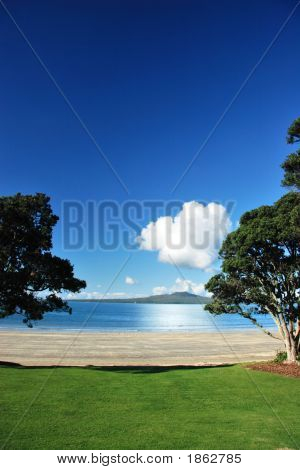 Rangitoto Through The Pohutakawas