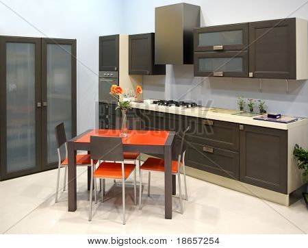 Modern kitchen. Element of design.