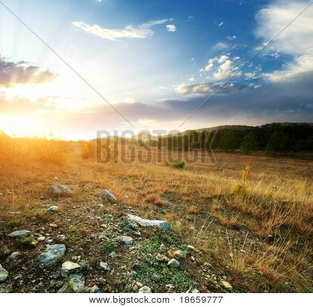 Sunset and big green meadow. Composition of nature.