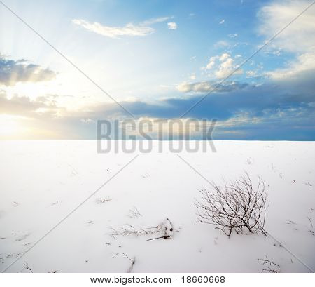 Winter plain. Composition of nature.