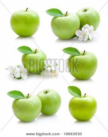 Grüner Apfel-Sammlung