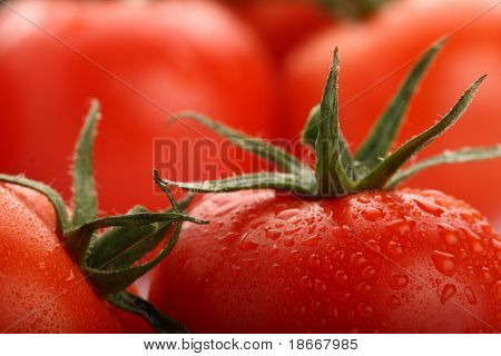 perfect fresh red wet tomatoes with tomato on background,  very soft focus, super macro shot.