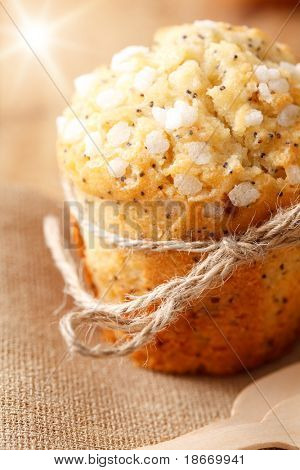poppy seed muffin in rustic style with sun beam, shalloe dof