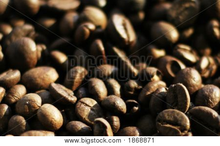 Grain Coffee
