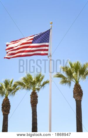 Us Flag And Palm Trees