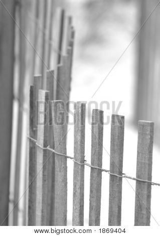 The Beach Fence