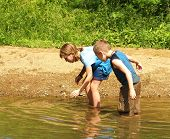 picture of tadpole  - Catching Tadpoles - JPG