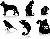Pet Silhouettes
