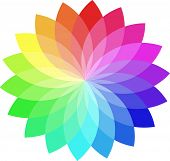 pic of color wheel  - Vector color wheel - JPG