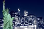 pic of new york skyline  - The Statue of Liberty and Manhattan skyline at Night - JPG