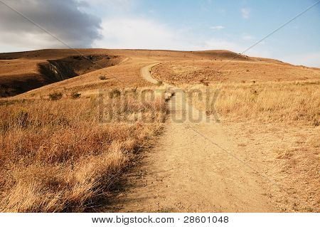 uphill path between yellow hills