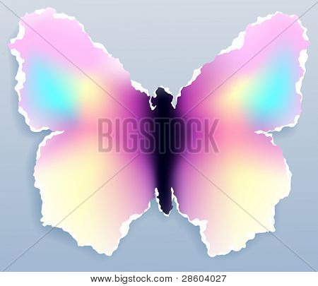 Butterfly,vector illustration