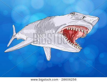 shark with open mouth against the background of blue water - color vector illustration - Eps10