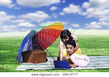 Couple Picnic With Laptop