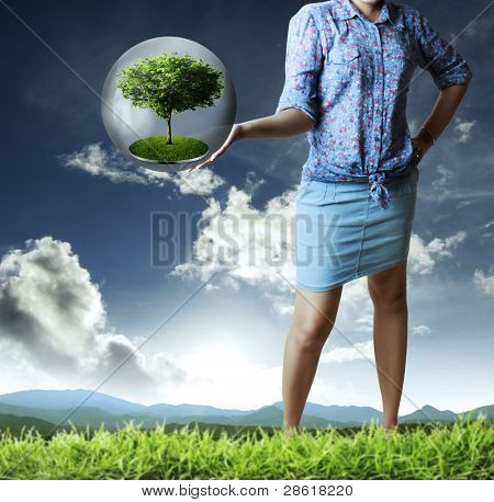 Hands holding green tree in  globe