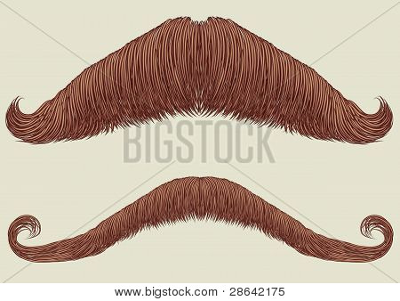 Mustaches For Man.vector Collection For Man Portrait