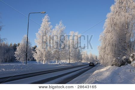 A car drives down a road, frosty trees along the road.