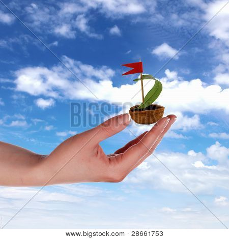 Nutshell ship with green leaf sail