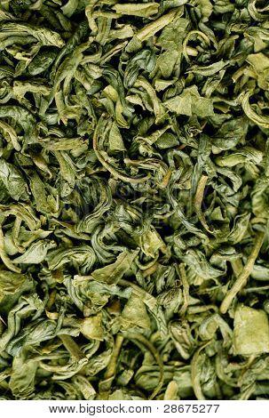 Green Tea Closeup