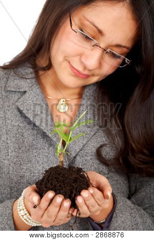 Business Woman With A Tree