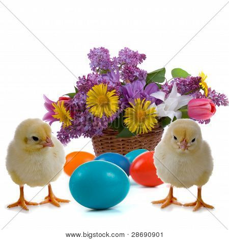 Easter Eggs, Chicken And A Bunch Of Flowers