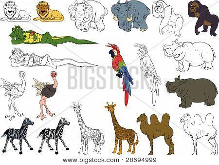 set of african animals