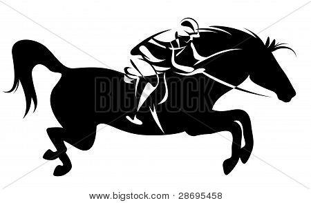 desporto equestre