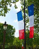 Постер, плакат: Французский трехцветный флаг в Париже