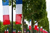 French Tricolor Flags on Champs-Elysees