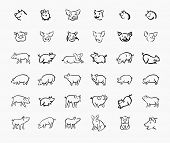 Pig Sketch Icon Set For Web, Mobile And Infographics. Hand Drawn Pig Icon. Pig Vector Icon. Pig Icon poster