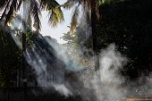 Coco Palm Trees Tropical Landscape With Smoke And Sun Beam. Romantic Sunset Landscape With Palms And poster
