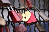 Red And Golden Padlocks With Hard On The Hohenzollern Bridge, Cologne, Germani.padlocks With Engrave poster