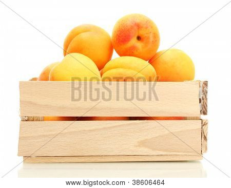 ripe apricots in wooden box isolated on white