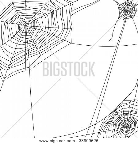 Spinnennetz auf weißem Hintergrund