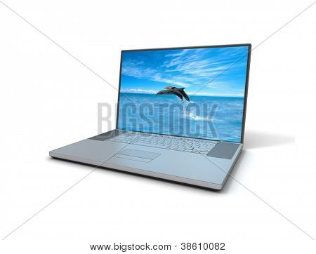Laptop dolphins
