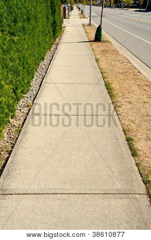 Sidewalk with a beautiful outdoor landscape and a row of trees.