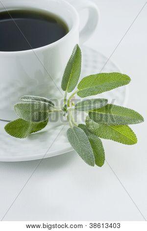 Herbal tea with fresh sage leaves