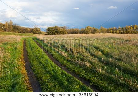 The road through the field. Autumn landscape