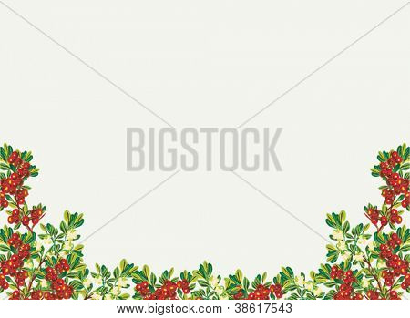 illustration with mountain cranberry branches half frame