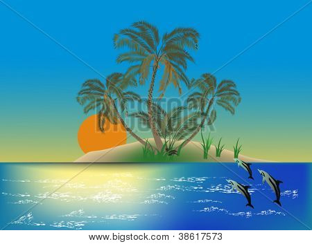dolphin play in waves near island with palm