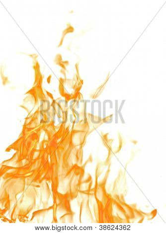 orange flame isolated on white background