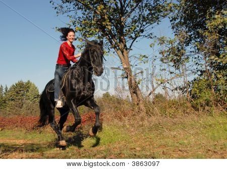 Galoping Horse