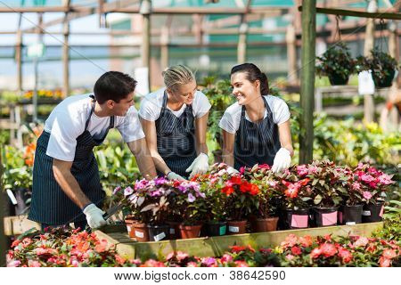 group of garden workers working in nursery