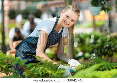 young female nursery worker working inside greenhouse