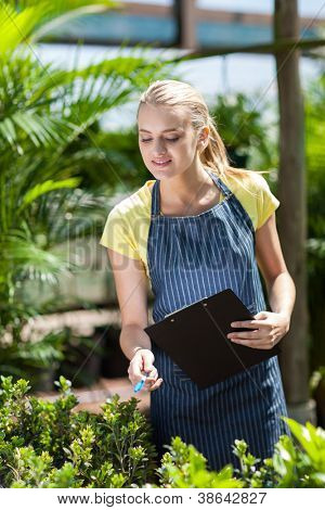 young female nursery worker counting stock in greenhouse