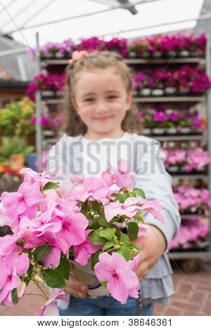 Little girl showing pink potted flowers in garden center