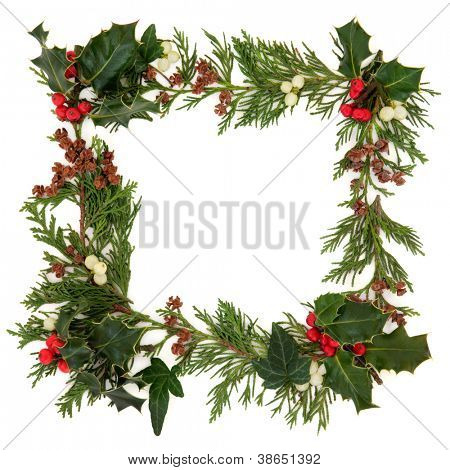 Christmas decorative border of holly,  ivy mistletoe and cedar leaf sprigs with pine cones over white background.